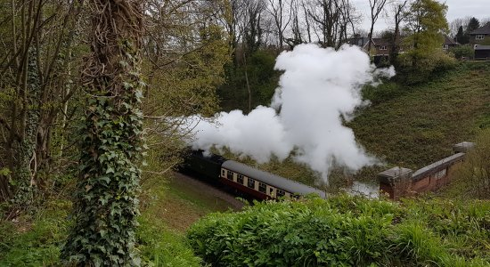 Train coming out of the tunnel at Sharpthorne